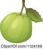 Royalty Free  Rf  Guava Clipart Illustrations Vector Graphics  1