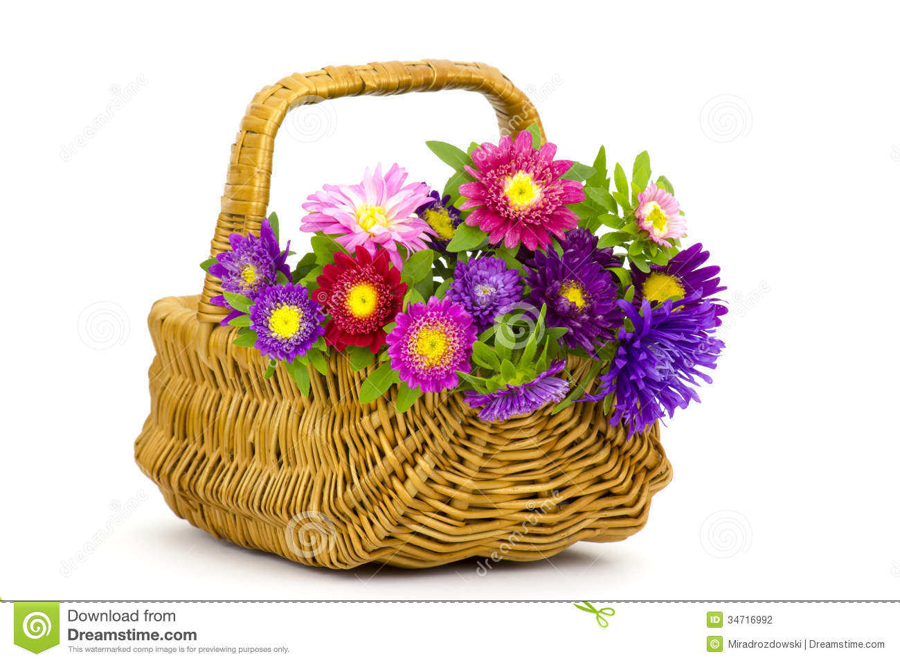 Bouquet Of Colorful Asters Flowers In A Basket On White Background