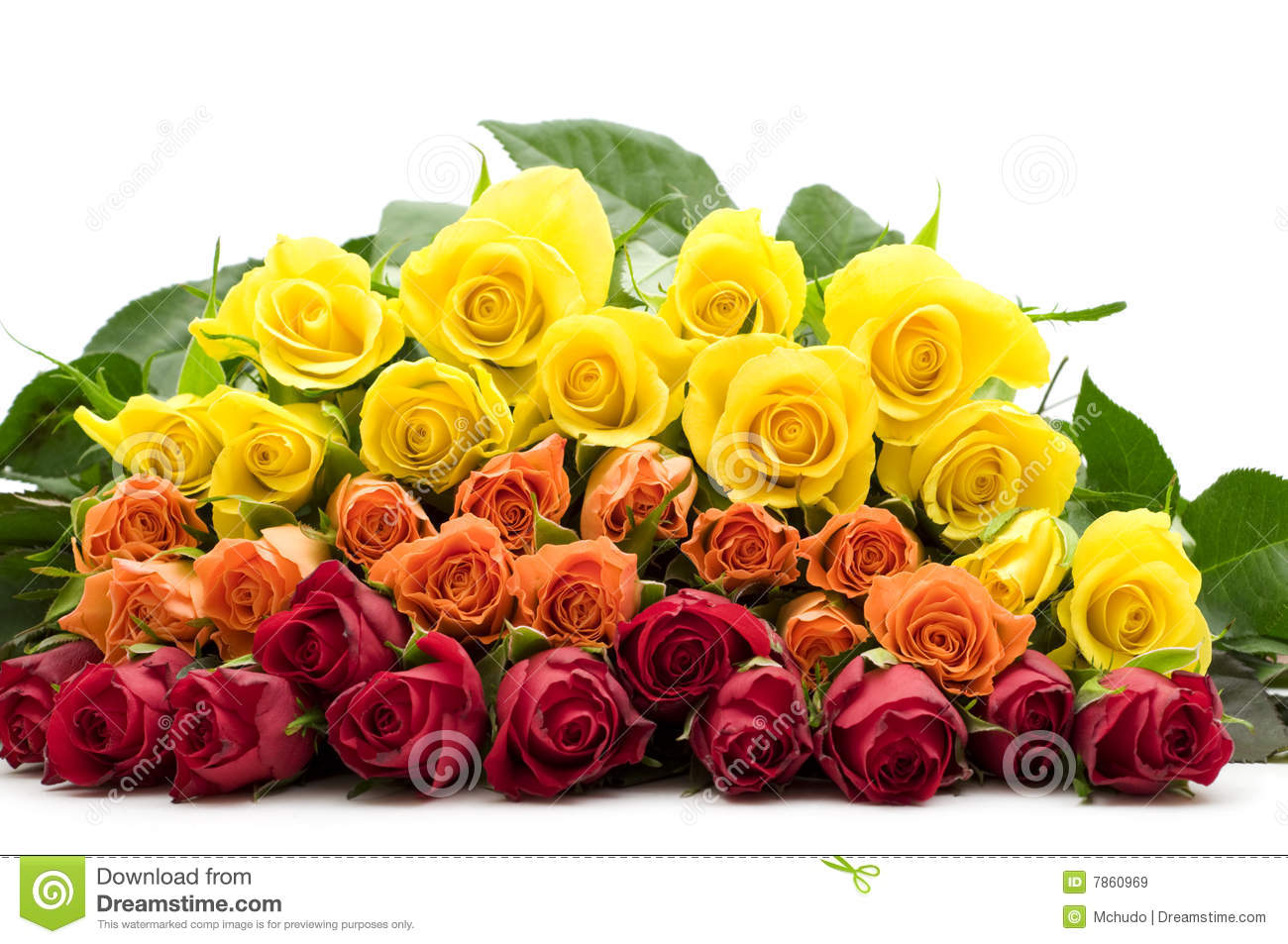 Bouquet Of Colorful Roses Royalty Free Stock Images   Image  7860969
