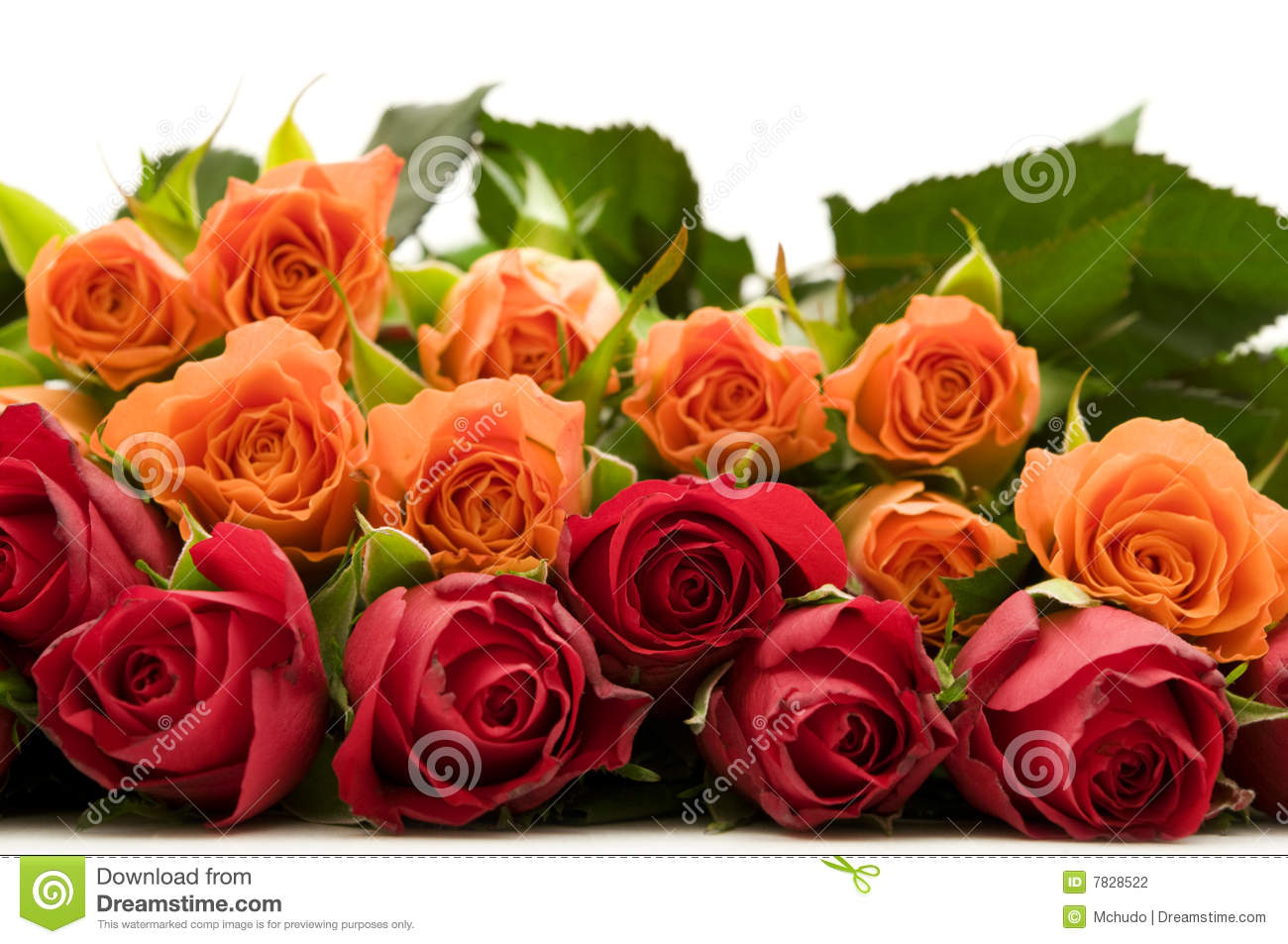 Bouquet Of Colorful Roses Stock Photography   Image  7828522