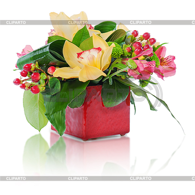 Colorful Floral Bouquet Of Roses Cloves And Orchids Arrangement