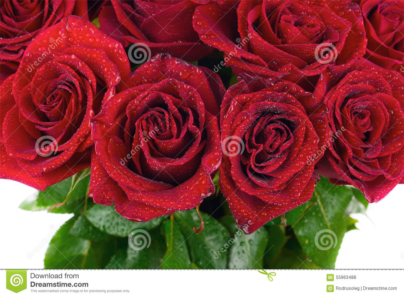 Colorful Flower Bouquet From Red Roses For Use As Background  Closeup
