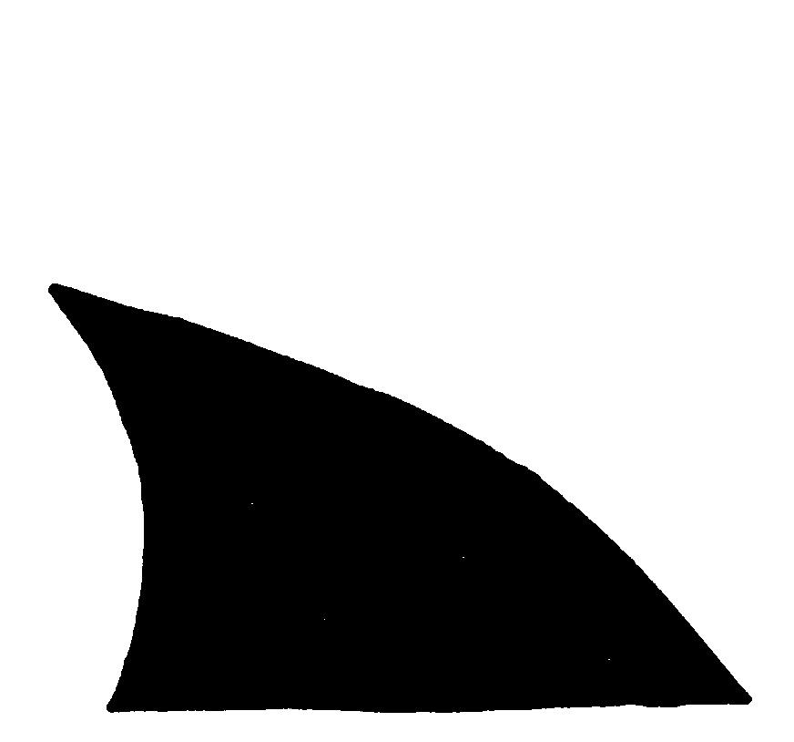 Shark Fin Logo Shark S Fin   Cli