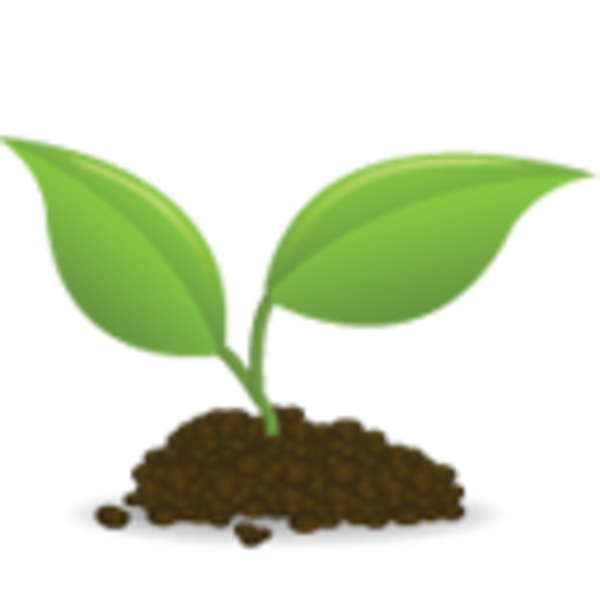 Seed Growing Clipart - Clipart Kid