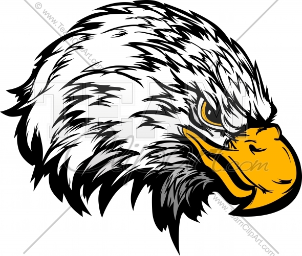 Eagle Head Mascot Vector Clipart Image   Team Clipart  Com   Quality