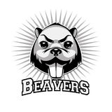 Beaver Logo Black And White Head Royalty Free Stock Image