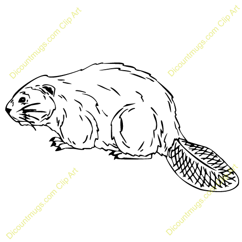 Clipart 12847 Beaver   Beaver Mugs T Shirts Picture Mouse Pads