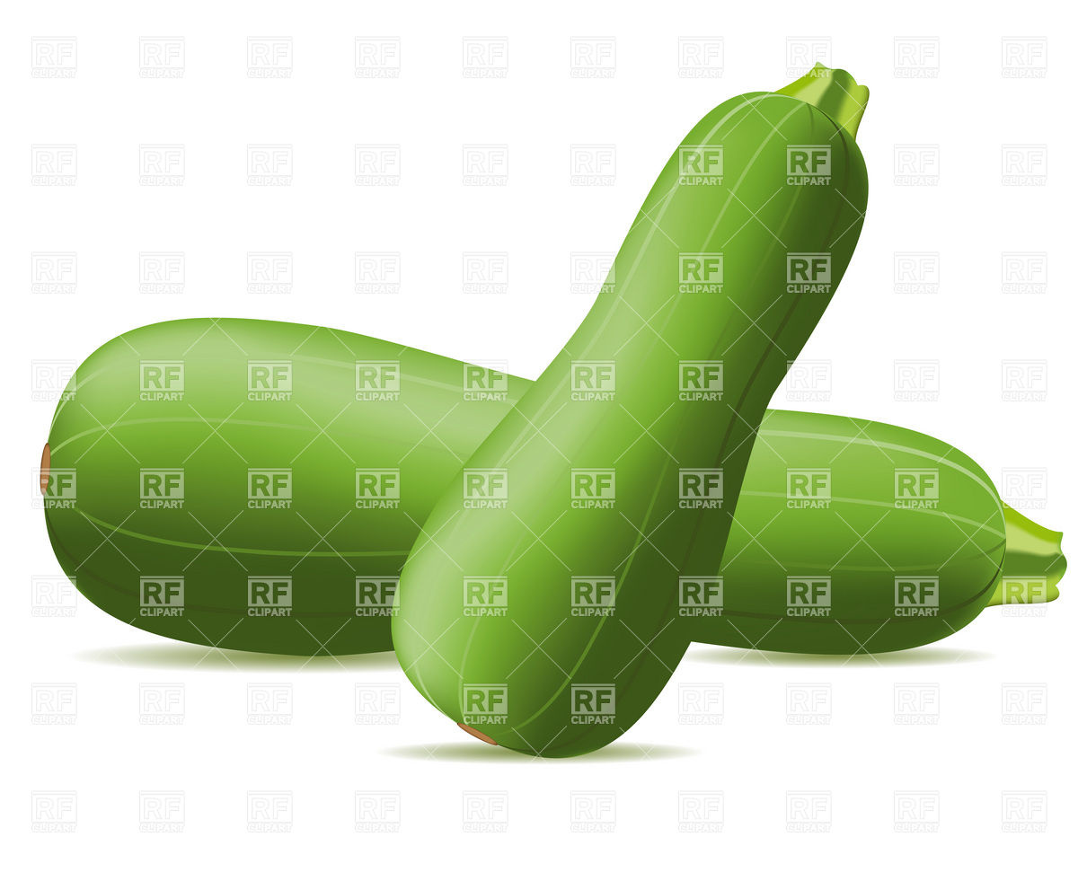 Zucchini Download Royalty Free Vector Clipart  Eps