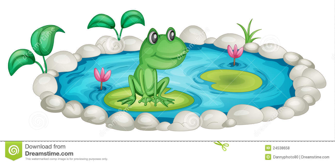 Frog In A Pond Royalty Free Stock Photos   Image  24538658