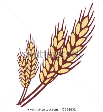 Barley Grain Clipart - Clipart Suggest