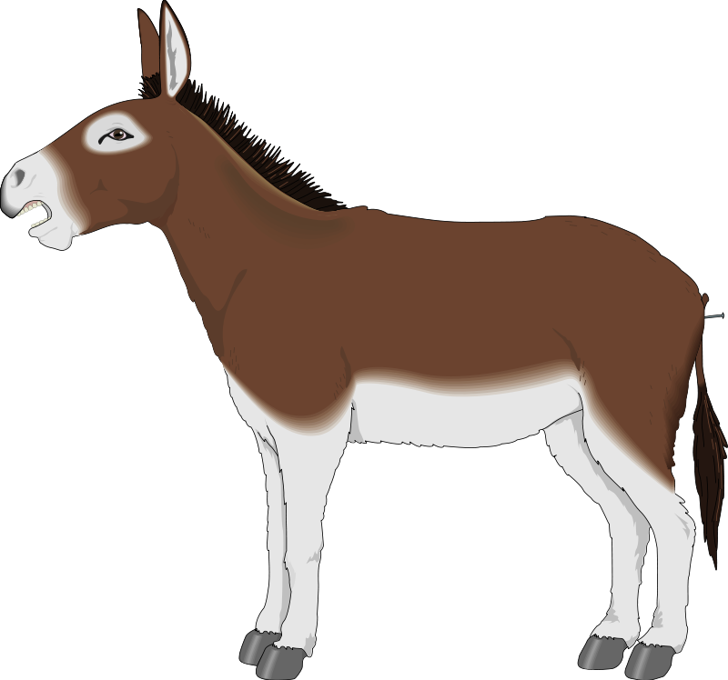 Print Your Free Donkey Animal Clip Art Below