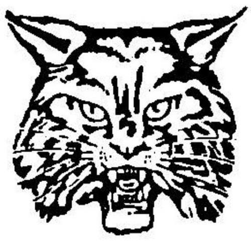 13 Wildcat Images Free Cliparts That You Can Download To You Computer