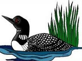 Clip Art Loon Picture