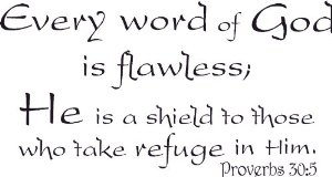 Every Word Of God Is Flawless A Shield To Those Who Take Refuge In Him
