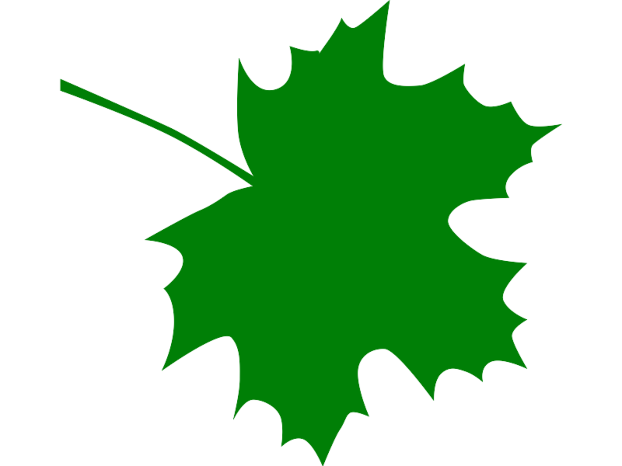 Sugar maple leaf clipart free clip art images