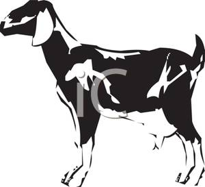 Dairy Black And White Clipart - Clipart Suggest