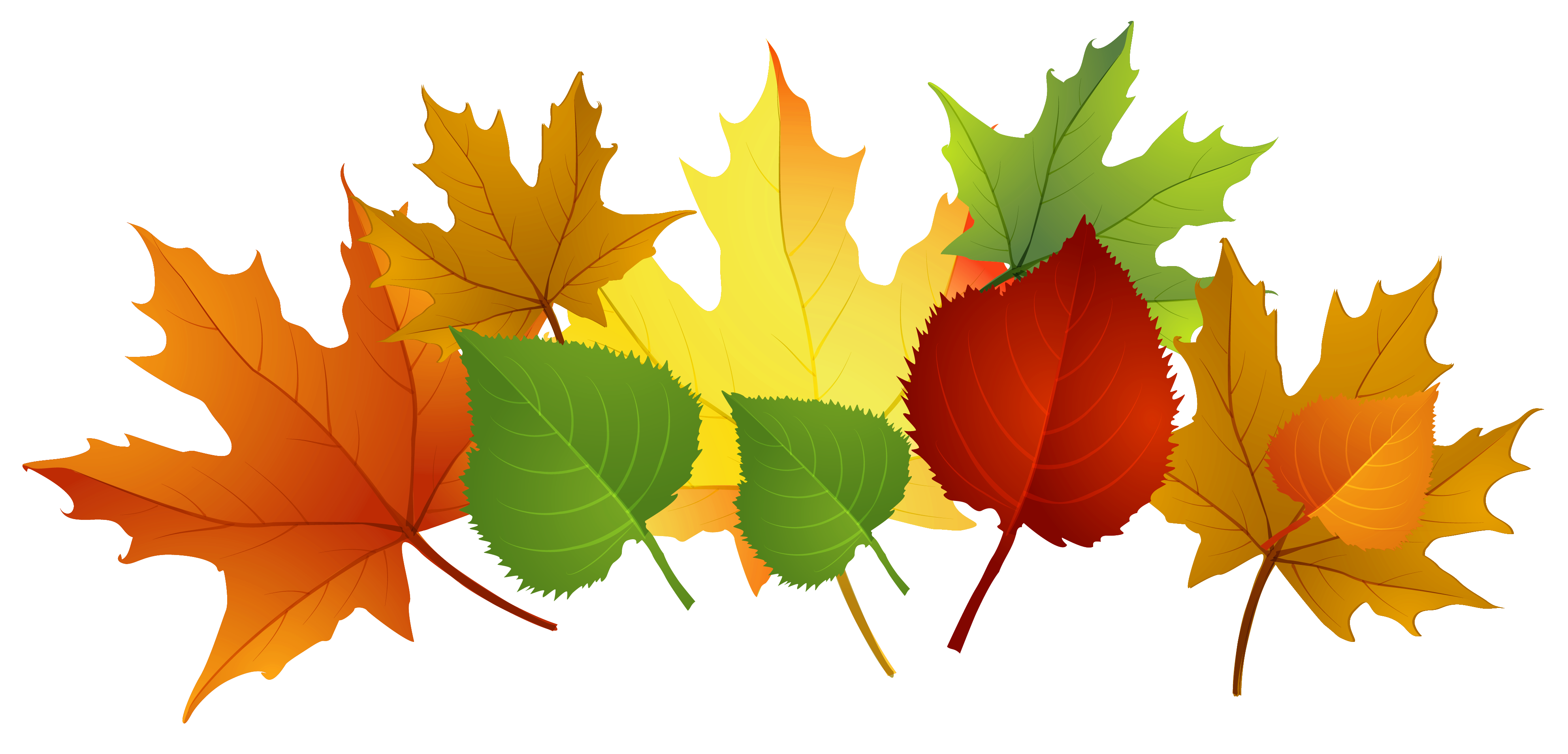 Image result for leaf clip art