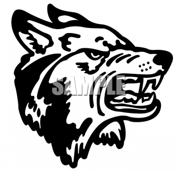 Animal Clipart Net Clipart Of An Aggressive Wolf Showing Its Teeth