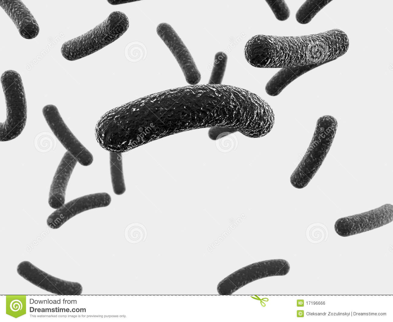 Bacteria Black And White Clipart - Clipart Suggest