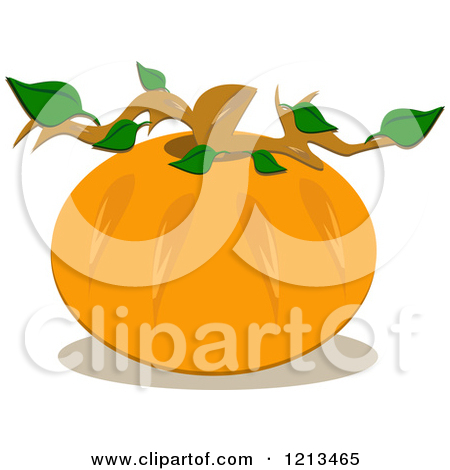 Go Back   Gallery For   Pumpkin Stem Clipart