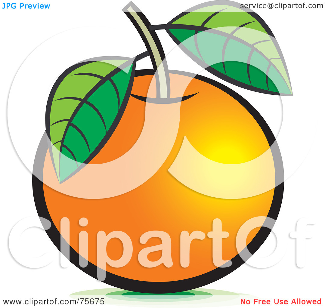 Pumpkin Stem Clip Art Royalty Free  Rf  Clipart
