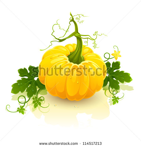Pumpkin Stem Clipart Vector Clip Art Illustration
