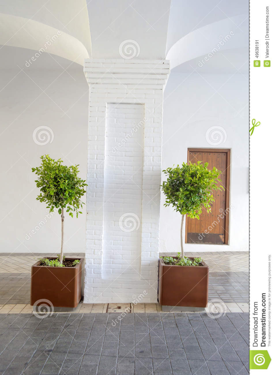 Small Potted Trees Outside Patio
