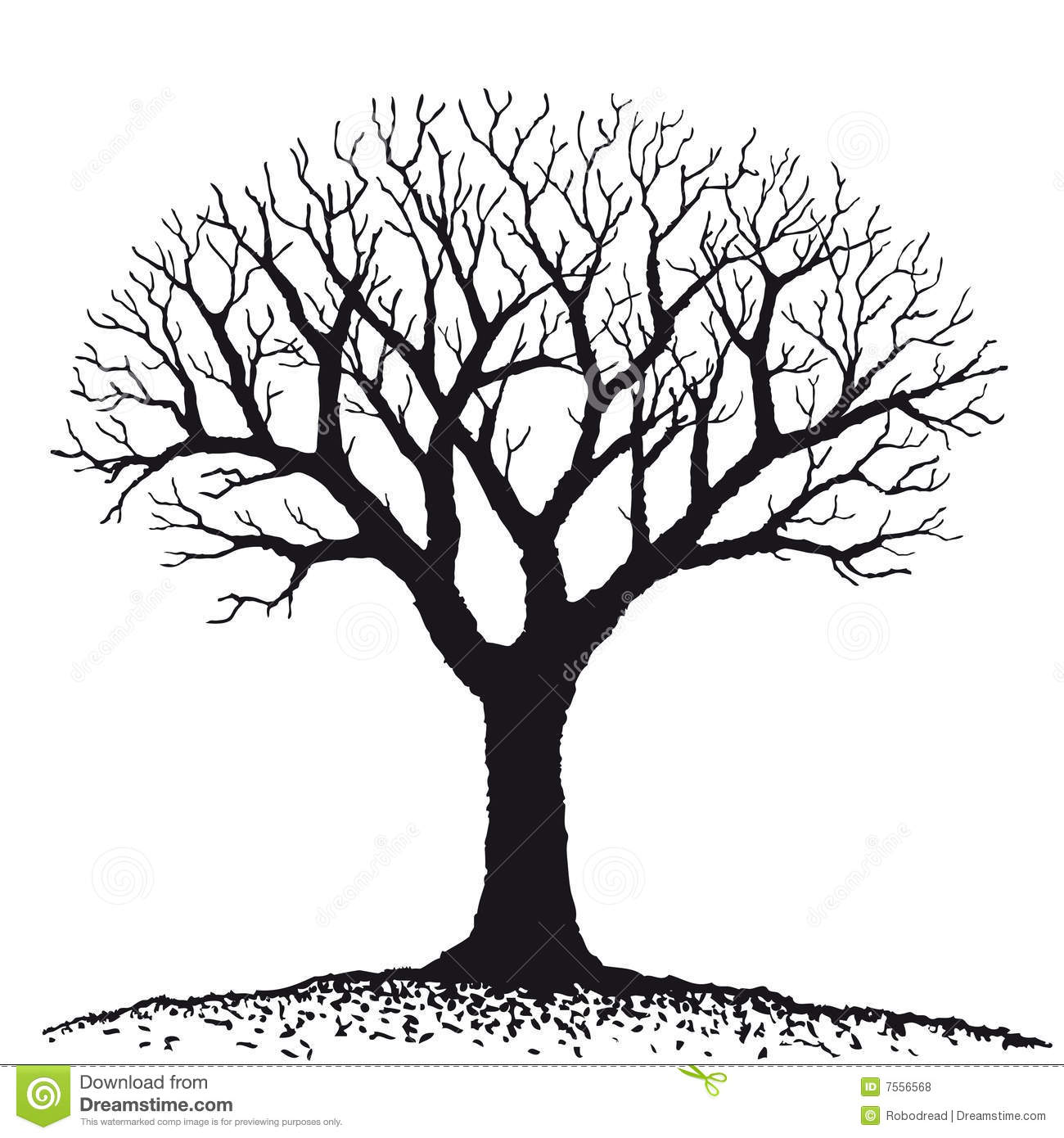 Maple Tree Black And White Clipart Clipart Suggest