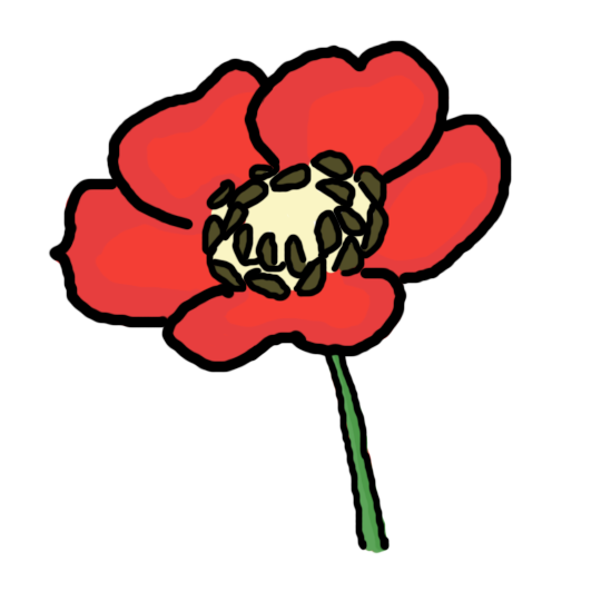 Clip Art Poppy Clip Art red poppy flower clipart kid 61 images of clip art you can use these free cliparts