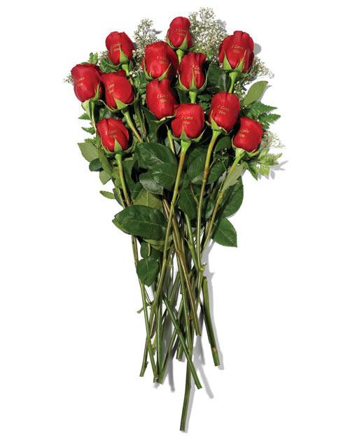 Back   Gallery For   A Dozen Long Stem Roses Clipart