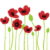 Poppy Illustrations And Clipart