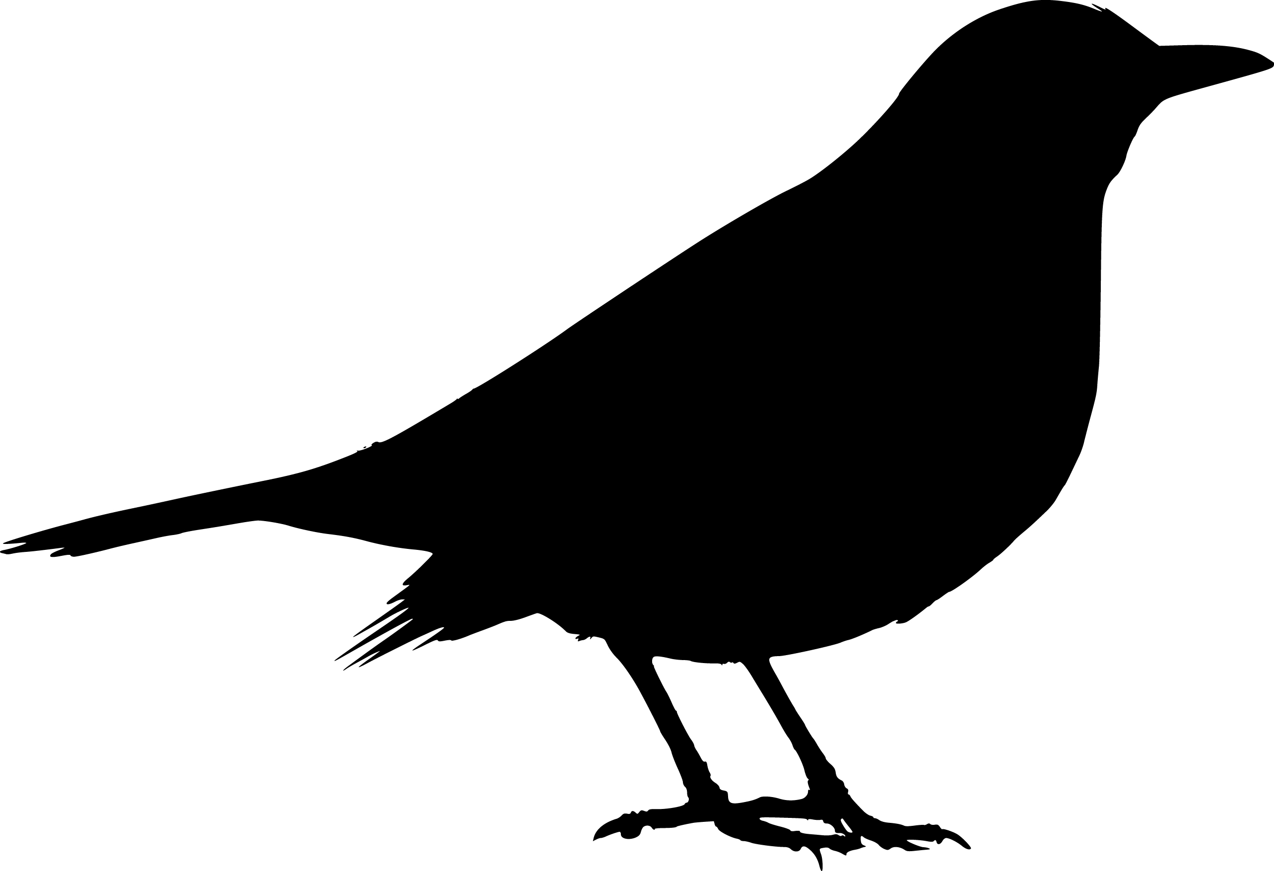 quail silhouette clip art - photo #20