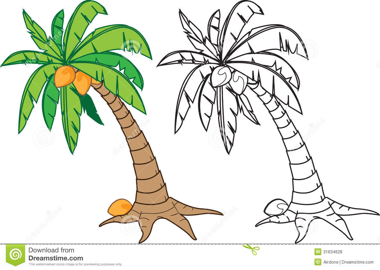 palm tree with coconuts drawing - photo #23