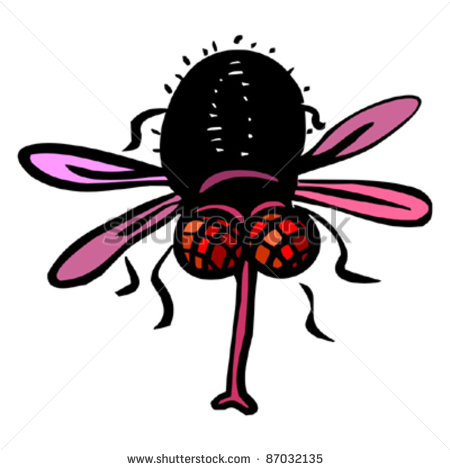 Funny Red Eyed Fly Stock Vector Illustration 87032135   Shutterstock