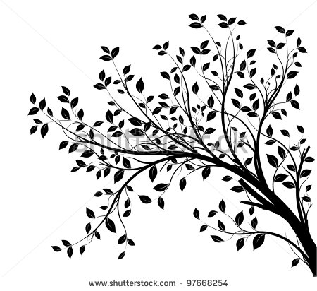 Tree Branches Silhouette Isolated Over White Background With Lot Of