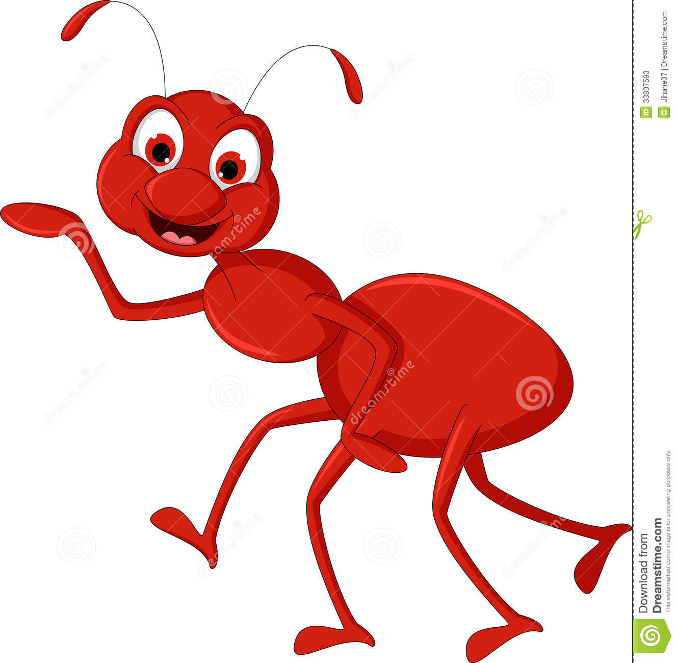 Red Ant Cartoon Presenting For You Design Stock Photos   Image