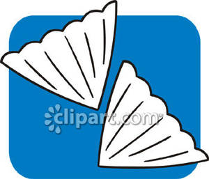 Two Coffee Filters   Royalty Free Clipart Picture