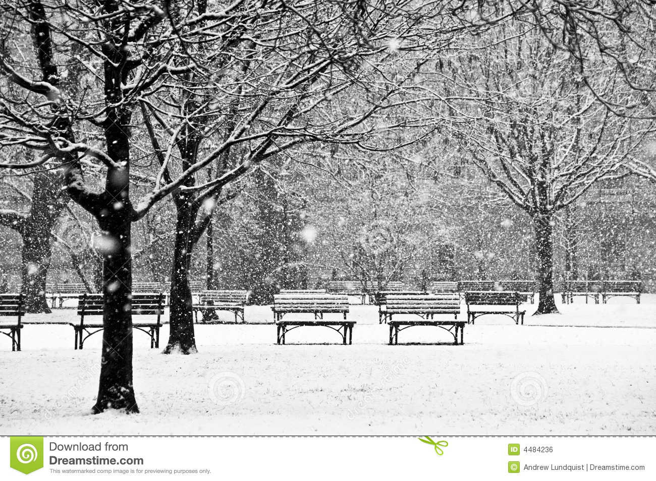 Winter Scene Black And White Clipart - Clipart Kid