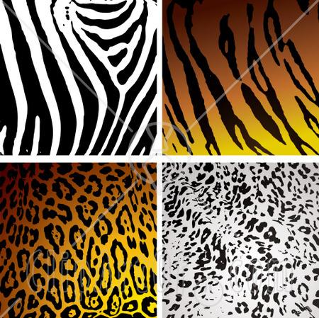 Cheetah Print Clipart Cheetah Print Backgrounds