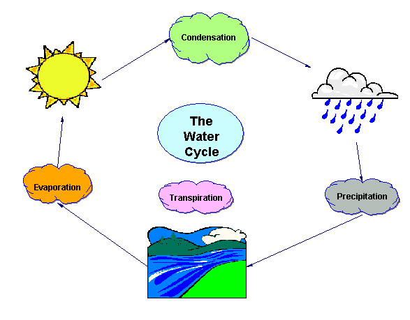 Animated Water Cycle Clip Art. Animated. Free Printable Water ...