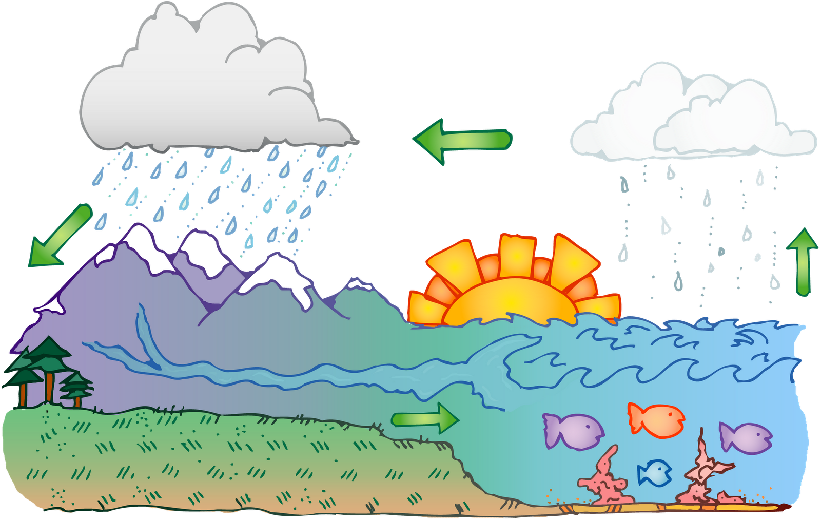 Carpatys Comearth Science Water Cycle Classroom Clipart   Carpatys