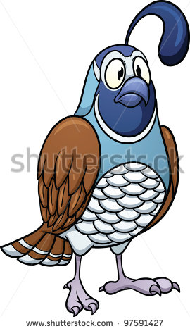 Stock Vector Cartoon Quail Vector Illustration With Simple Gradients