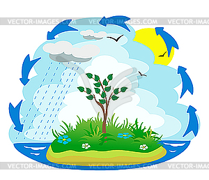 The Water Cycle   Vector Clip Art