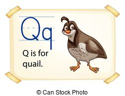 Wing Quail Vector Clipart And Illustrations
