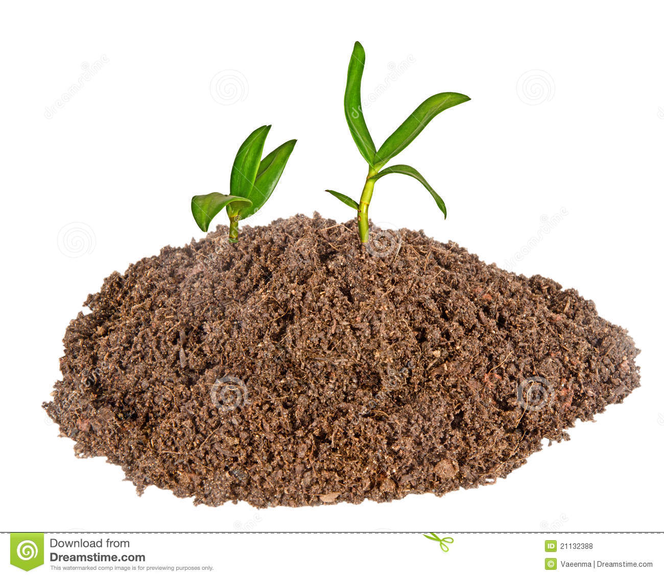 Soil clipart clipart suggest for Soil clipart