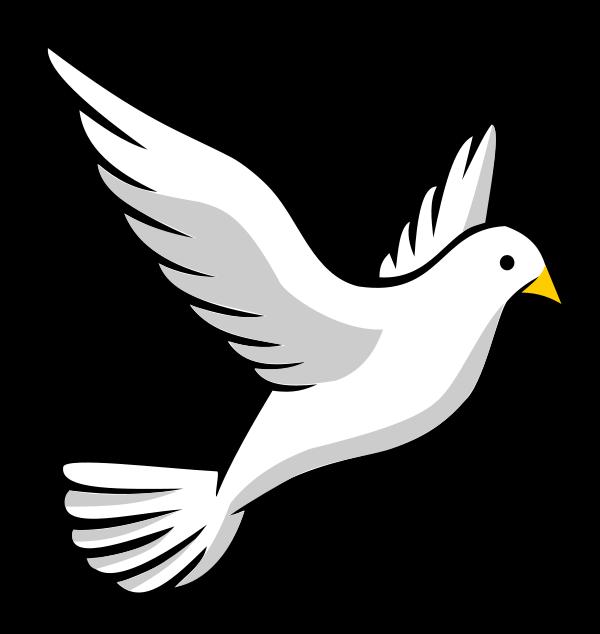 Flying Bird Transparent Clipart - Clipart Kid