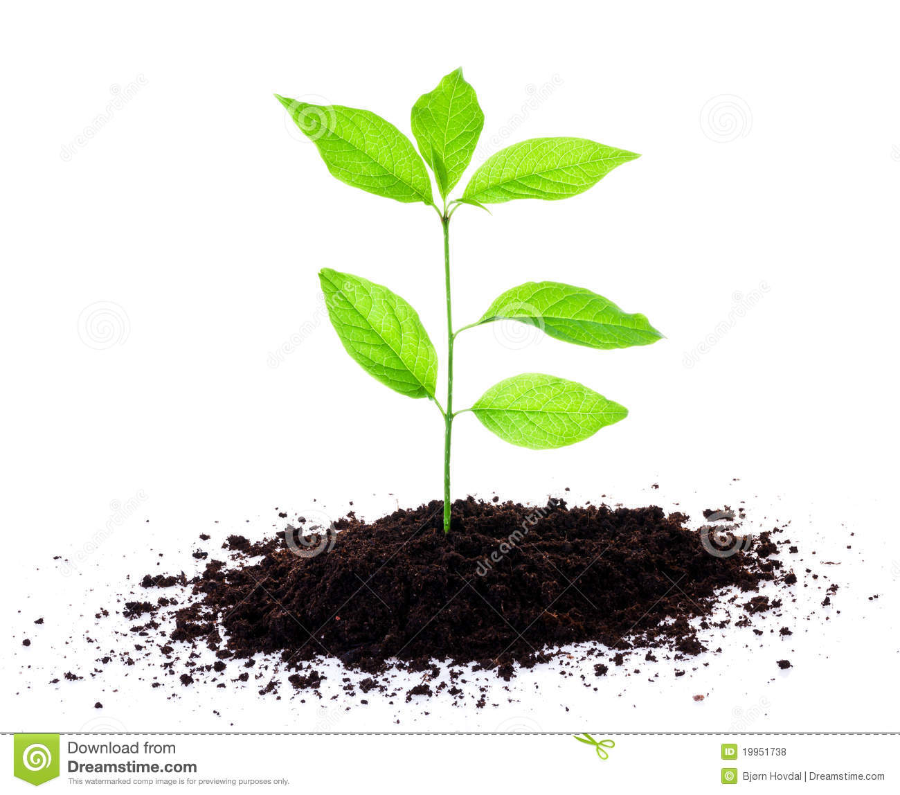 Soil clipart clipart suggest for Soil and green