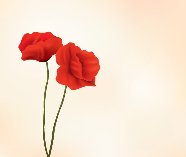 Red Flowers Vector Graphic   Minimal Elegant Stylish Flower