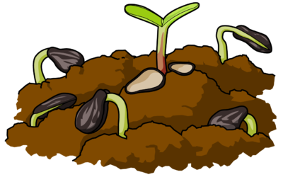 Seeds And Soil Clipart