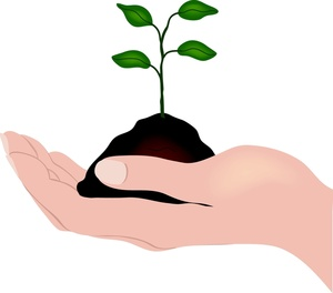 Clip Art Soil Clipart soil clipart kid hand holding a seedling and 0515 1003 2901 5345 smu